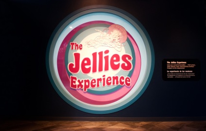 The Jellies Experience at the Monterey Bay Aquarium