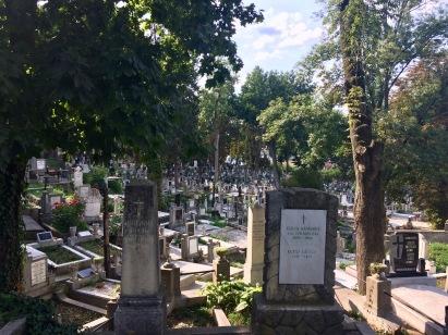 Hazsongard Cemetery, Cluj-Napoca
